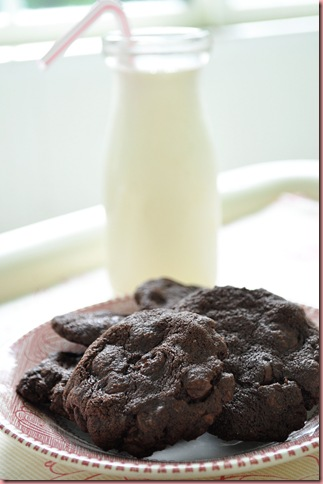 Mexican Chocolate Cookies2