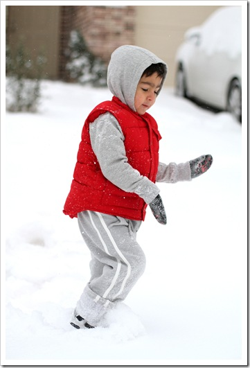 snow9b