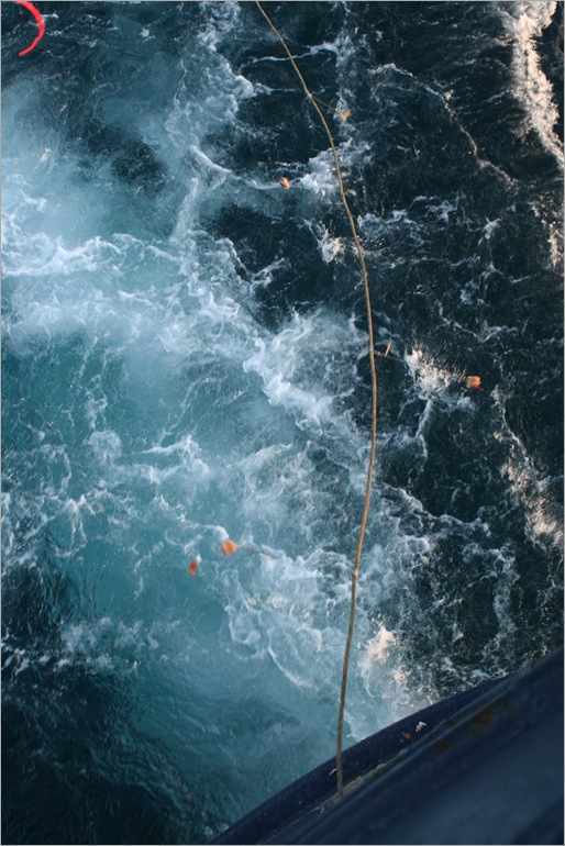 this is the gournd line coming out from the stern of the boat. we were using squid for bait.