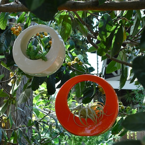 Modern Hanging and Tabletop Pots   Circle Pots by Potted