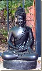 Buddha 4-18-2009 8-49-51 AM 913x1574