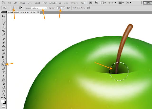 เทคนิคการวาดรูปแอบเปิ้ลสวยๆ Apple49