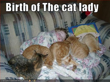 funny-pictures-a-cat-lady-is-born