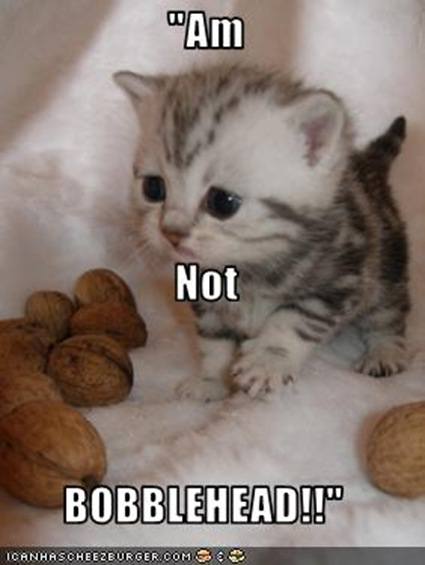 funny-pictures-kitten-claims-he-is-not-a-bobblehead
