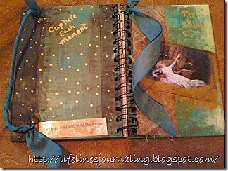 altered journal2