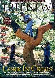 TREE NEWS7