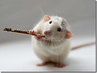 Flute_1448649i