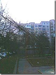Photo-0065