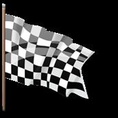 1299641229_checkered_flag