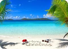 HolidaysBEachClean