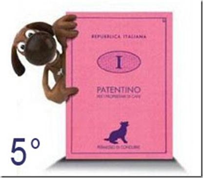 Patentino-cani5