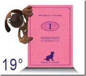 Patentino-cani19
