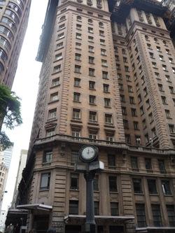 Cãonhecendo São Paulo (254)
