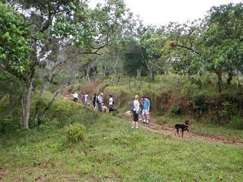 Dogs Trekking 3 (61)