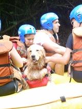Pet's Adventure 3 (288)