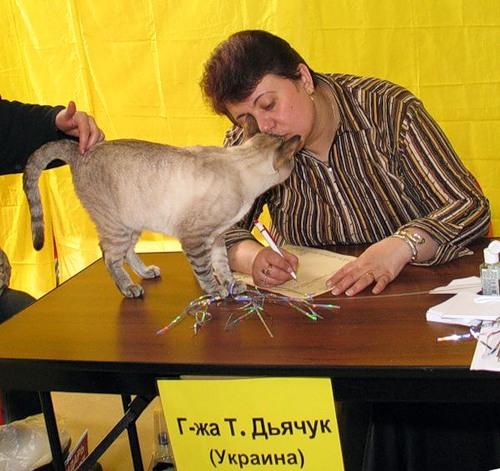 Татьяна Дьячук