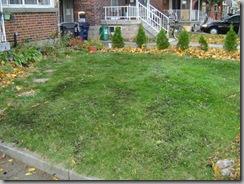 garden fall 023
