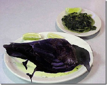eating_crow