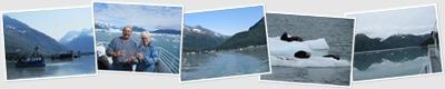 View Valdez Glacier and Wildlife Cruise