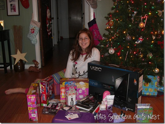 december 2010 040