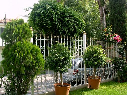Sancarlosfortin casa jardin for Casa jardin 8 de octubre