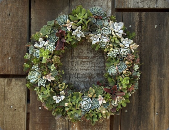 wreath flora grubbs