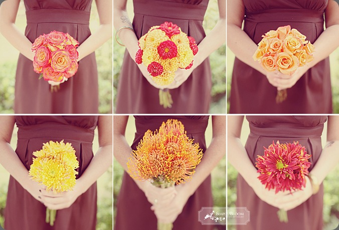 ashley1 simply bloom
