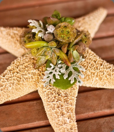 starfish_ringbearer_pillow-884x1024 botanica floral designs