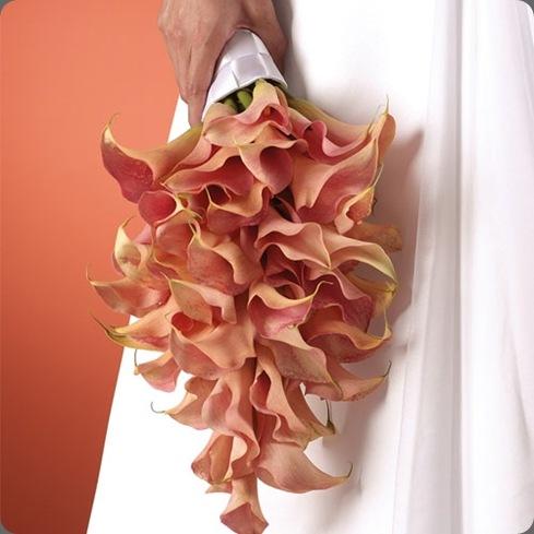 calla-lily-teardrop-bouquet-ws-108-11 origin unknown
