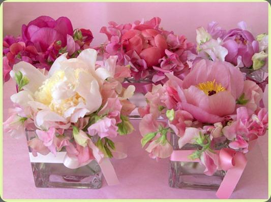 florali_wins003 florali