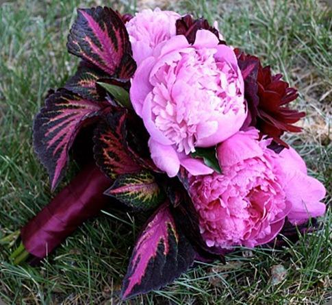 IMG_0086 bella fiori