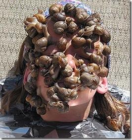 snails_face