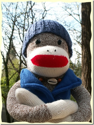 65_Face_Sock_Monkey
