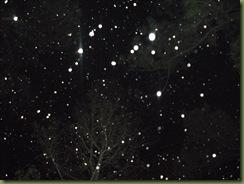 snow 3 018