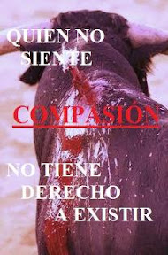 torito torturado.jpg