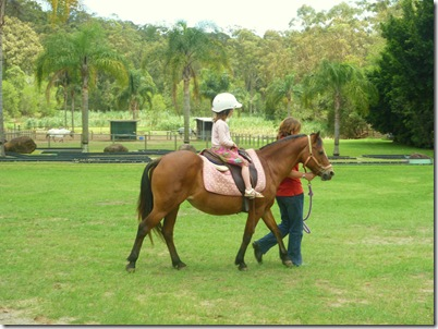58 camp horseride