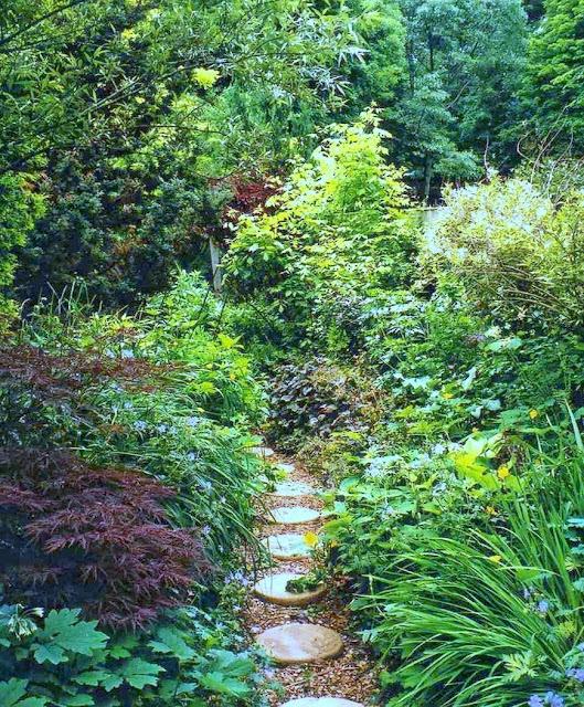 garden001-1.jpg