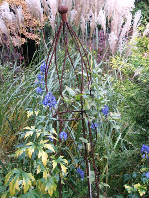 aconitum carmichaelii and miscanthus silene in Oct.