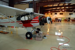 PIPER SUPER CUB UNDERGOING RE-FIT....WAS USED TO TRACK PARROTS