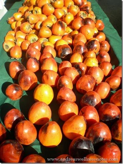 November Farmers Market 02