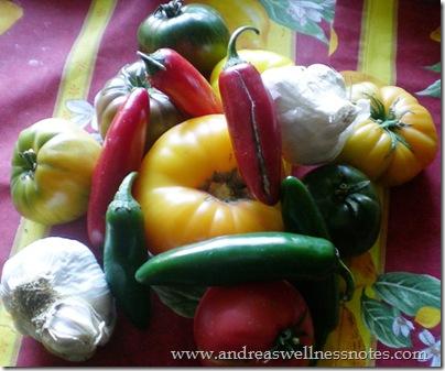 November Farmers Market 16