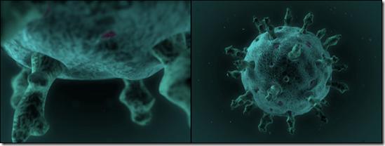 3D_Rotavirus_2Board