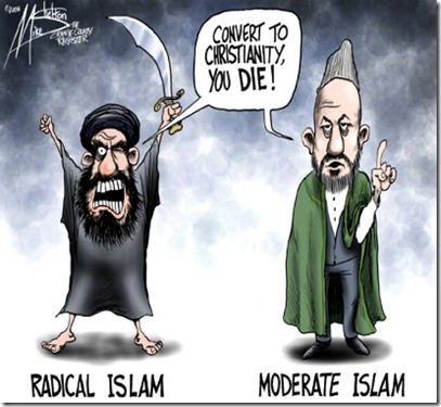 Radical-Moderate Islam
