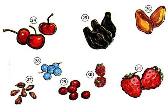 FRUITS 5 <!  :en  >Fruits<!  :  > things english through pictures english through pictures