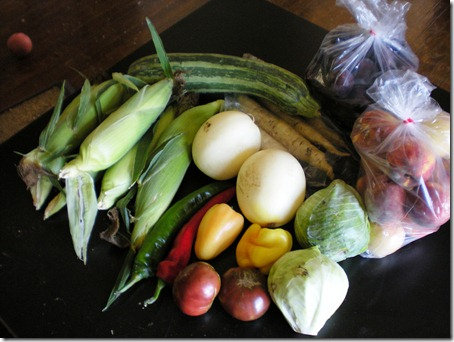 corn, zucchini-zilla, white carrots, Italian Plums, peaches, baby cabbages, tomatoes, sweet and hot peppers and 2 personal melons.