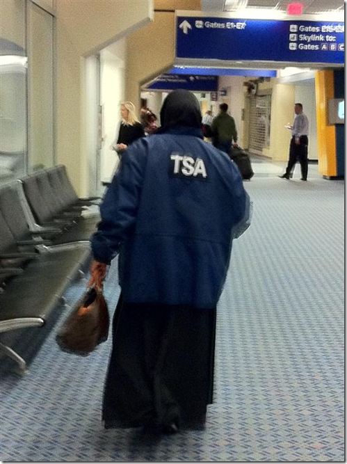 TSA Hag in Bag