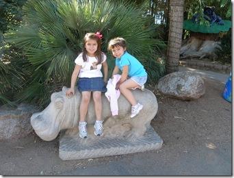 Zoo 005