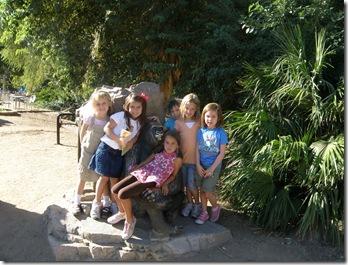 Zoo 006