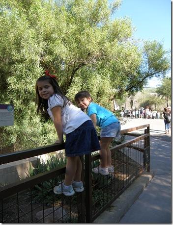Zoo 023