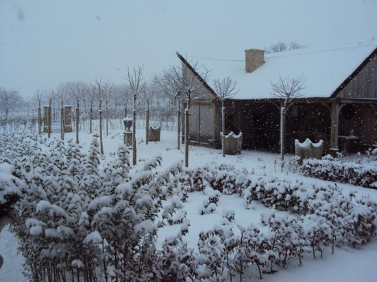 Foto 20 december 2010 018